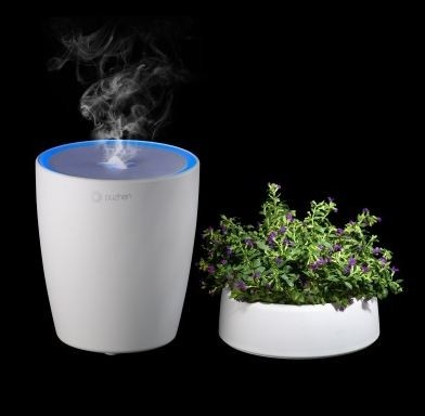 Aroma Diffuser, Sprout