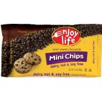 Enjoy Life Gluten Free Mini Chocolate Chips, 10 Oz Bag (Case of 12)