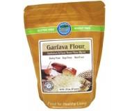 Authentic Foods Garfava Flour, 20 Ounce
