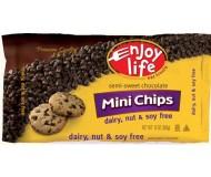 Enjoy Life Gluten Free Mini Chocolate Chips, 10 Oz Bag (12 Pack)